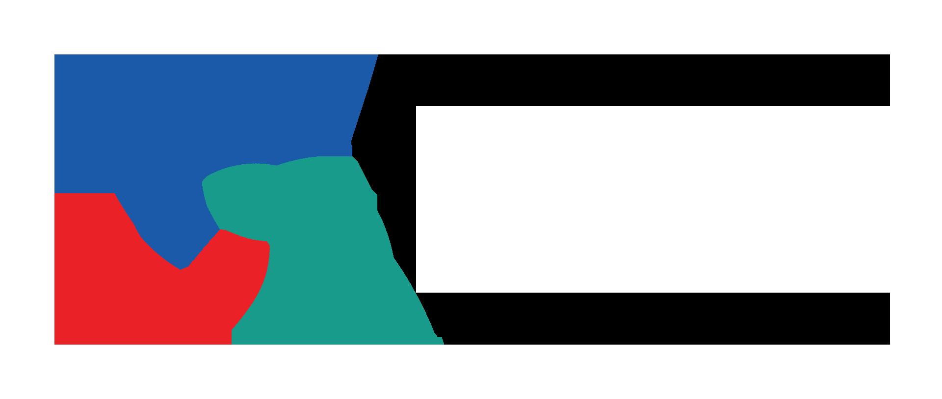logo_tvn_w
